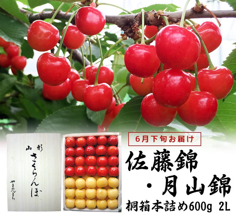 佐藤錦・月山錦桐箱600g